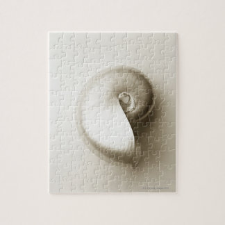 Pearlised nautilus sea shell 2 jigsaw puzzle