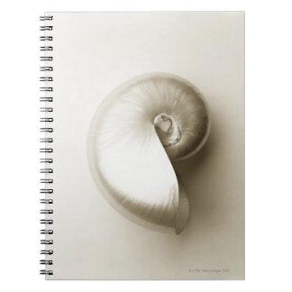 Pearlised nautilus sea shell 2 notebook