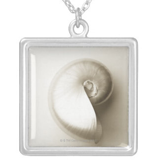 Pearlised nautilus sea shell 2 silver plated necklace