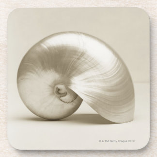 Pearlised nautilus sea shell coaster