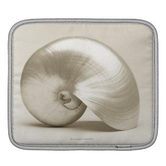 Pearlised nautilus sea shell iPad sleeve