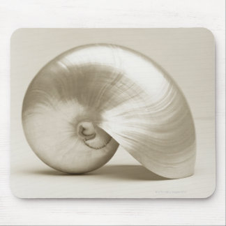 Pearlised nautilus sea shell mouse mat