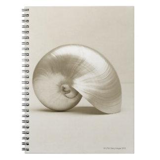 Pearlised nautilus sea shell notebook