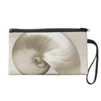 Pearlised nautilus sea shell wristlet
