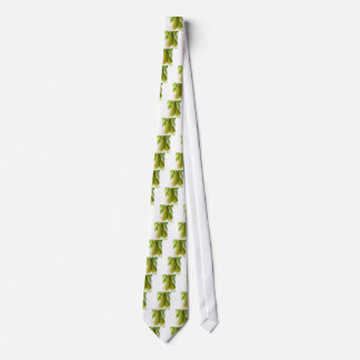 Pears on tree branches tie