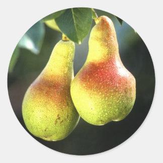 Pears Round Sticker