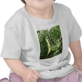 Peas in a Pod on a vine Shirt