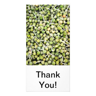 Peas Sprouts Photo Greeting Card