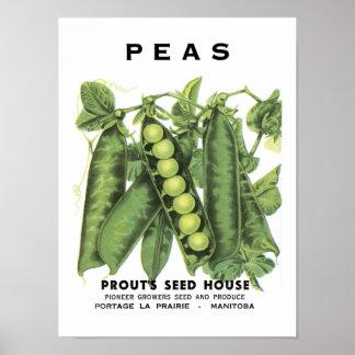 Peas Vintage Seed Packet Posters