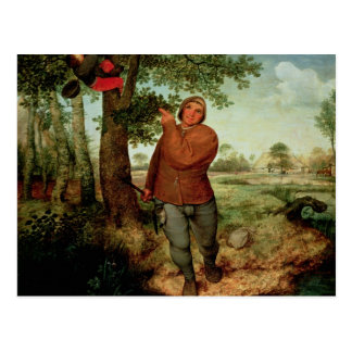 Peasant and Birdnester, 1568 Post Cards
