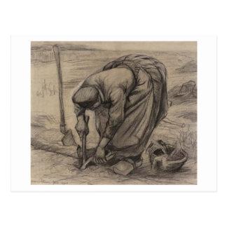 Peasant Woman Planting Beets Vincent van Gogh Postcards