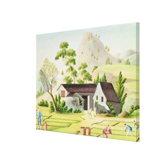 Peasants in the Paddy Fields Canvas Print