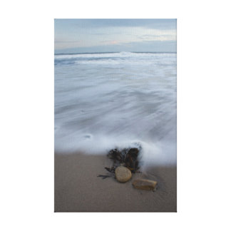Pebble on the Beach Canvas Print