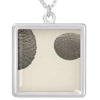 Pebbles carved by sand, Colorado River Silver Plated Necklace