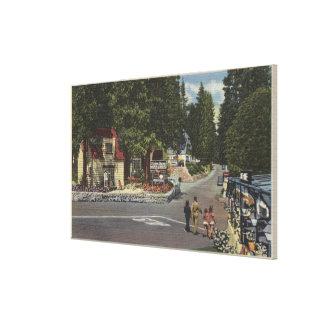 Pedestrians on Lake Shore Drive Canvas Print