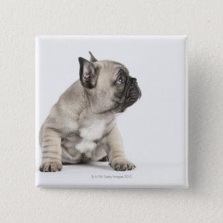 Pedigree puppy 15 cm square badge