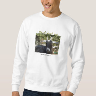 Pedro in the spring sweatshirt