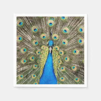 Pedro Peacock Feathers Colorful Wild Bird Peafowl Disposable Serviette