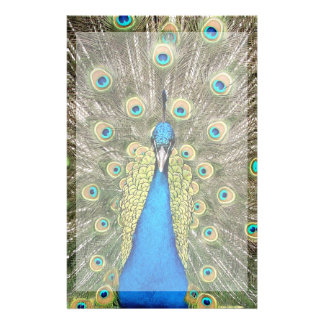 Pedro Peacock Feathers Colorful Wild Bird Peafowl Stationery