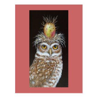 pedro the burrowing owl postcard