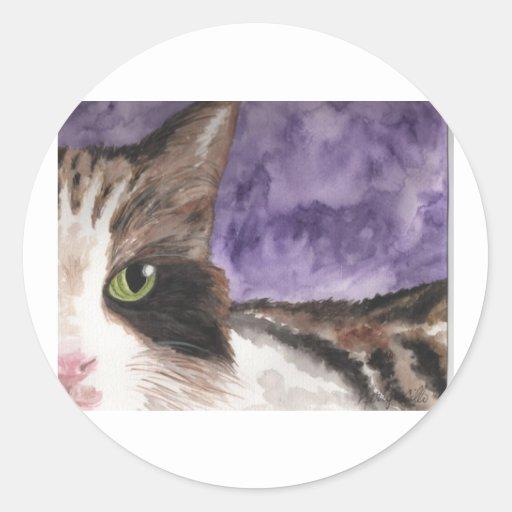 Peek a boo Calico Kitty Cat Stickers