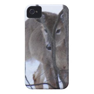 peek-a-boo deer. iPhone 4 case