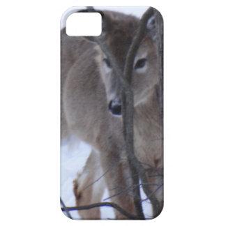 peek-a-boo deer. iPhone 5 cover