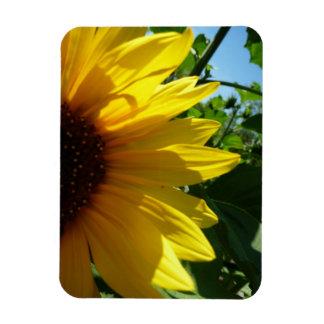 peek-a-boo rectangular photo magnet