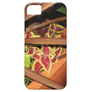 Peek-a-Boo Flora iPhone 5 Covers