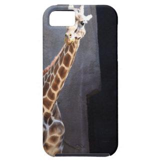 Peek-a-boo giraffe iPhone 5 cases