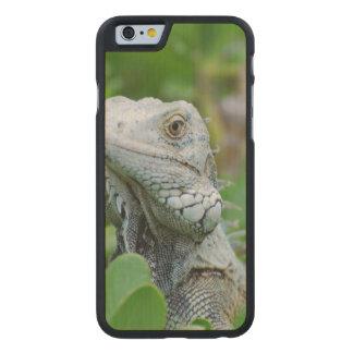Peek-a-boo Iguana Carved® Maple iPhone 6 Case
