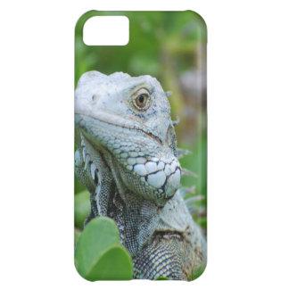 Peek-a-boo Iguana iPhone 5C Case