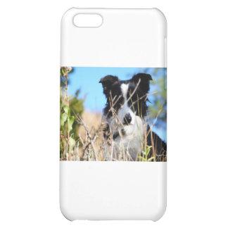 Peek a boo iPhone 5C covers