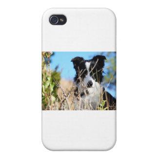 Peek a boo iPhone 4 case