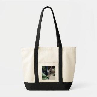 Peek-A-Boo Kitten Bag