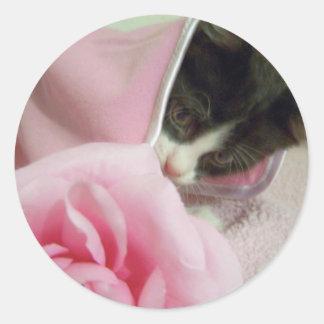peek a boo kitten round sticker