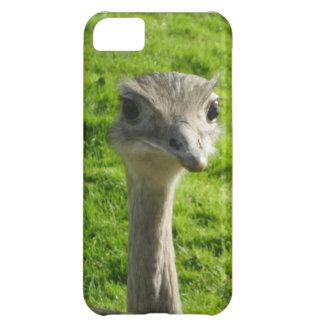 Peek-a-boo ostrich phone case iPhone 5C case