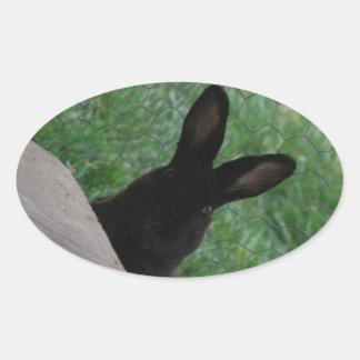 Peek-a-boo Oval Sticker