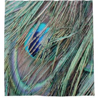 Peek a Boo Peacock Feathers Shower Curtain