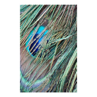 Peek a Boo Peacock Feathers Stationery