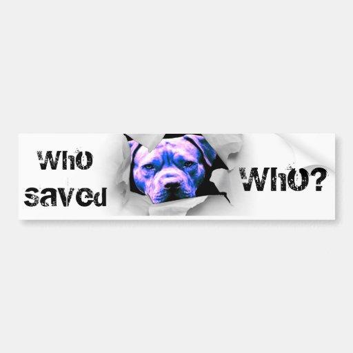 Peek A Boo Pit Bull Bumper Sticker