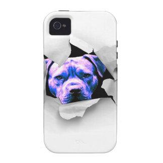 Peek A Boo Pit Bull Case-Mate iPhone 4 Case
