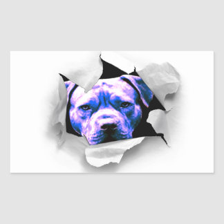 Peek A Boo Pit Bull Rectangular Sticker