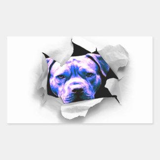 Peek A Boo Pit Bull Sticker