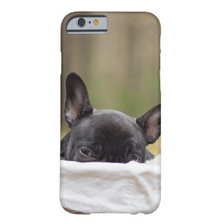 Peek-A-Boo Puppy Barely There iPhone 6 Case