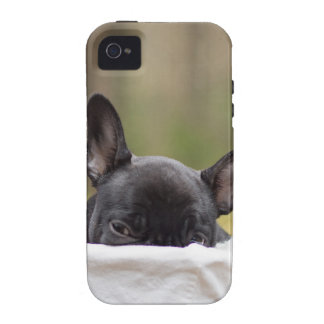 Peek-A-Boo Puppy iPhone 4 Covers