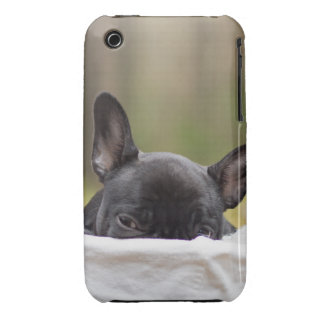 Peek-A-Boo Puppy iPhone3 Case