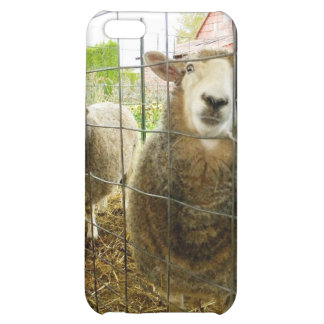 Peek a Boo Sheep iPhone 5C Cases