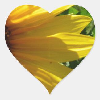Peek A Boo Sunflower Stickers