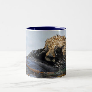 Peeking Sea Otter Mug